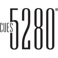 5280 Pool Cue Cases