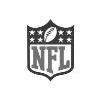 NFL Pool Cues